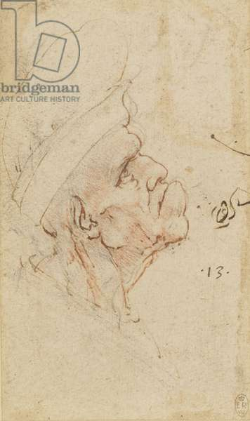 A grotesque old man in profile, c.1490-95 (red and black chalk and pen and ink on paper)