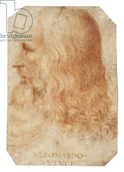 A portrait of Leonardo in profile, c.1515 (red chalk)