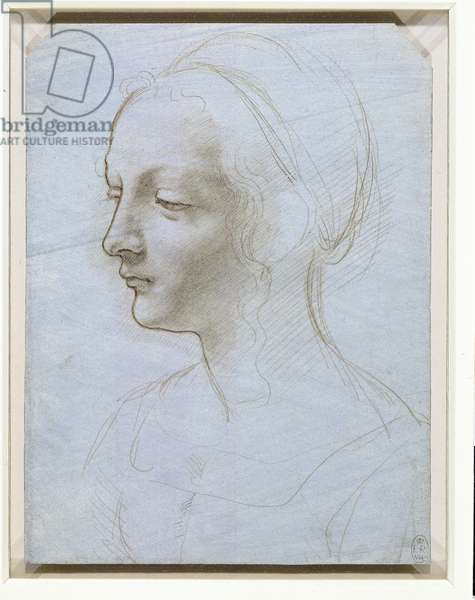 The head and shoulders of a woman, almost in profile, c.1485 (metalpoint on pale blue paper)