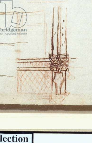 Detail of the Tree-Trunk Columns from 'Studies of the vessels of the body and of staircases, c.1506-10 (pen & ink with red chalk on paper)