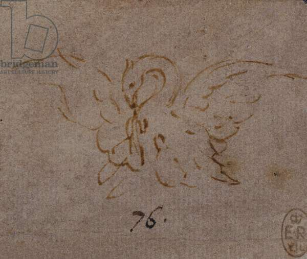 A pelican in piety, c.1517 (pen & ink with chalk on paper)