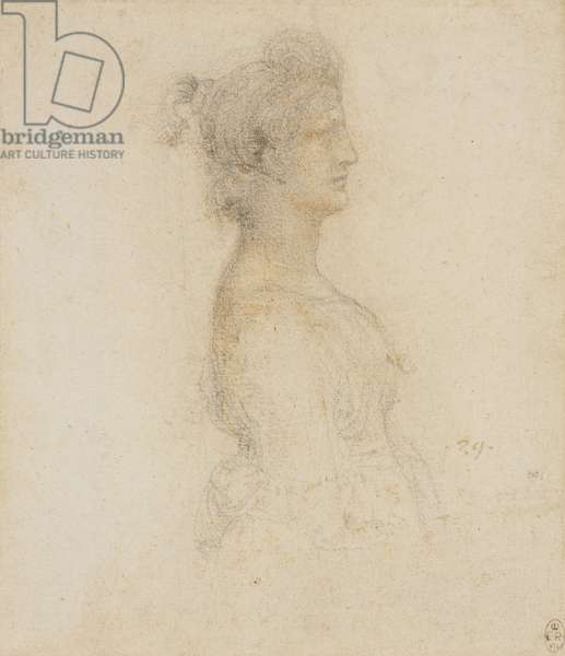 The bust of a masquerader in profile, c.1517-18 (chalk on paper)