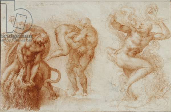 Three Labours of Hercules, c.1530 (red chalk on paper)