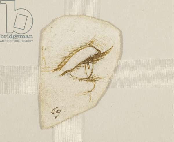 An eye in profile, c.1490 (pen & ink on paper)