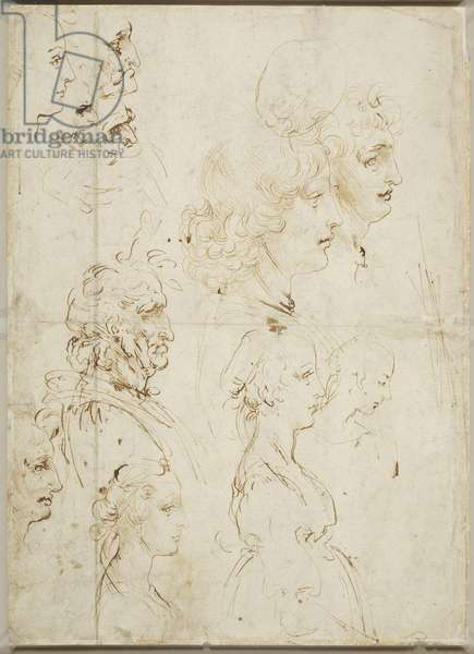 Heads in profile, c.1478-80 (pen & ink on paper)