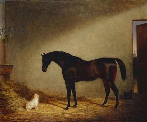 Tartar with Scotty, 1839 (oil on canvas)
