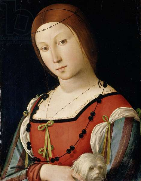 Portrait of a lady with a lapdog, c.1500-05 (oil on panel)