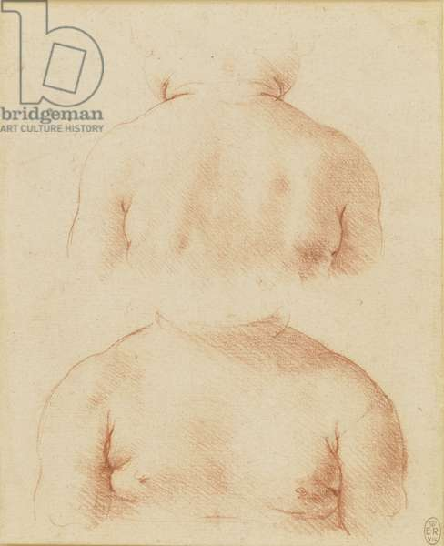A bust of a child from the front and back, c.1500 (chalk on paper)