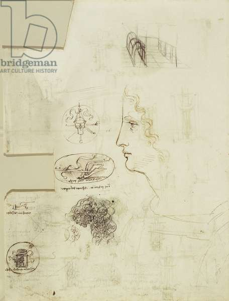 Studies of emblems, decorative dress, architecture, and a profile, c.1506-10 (pen and ink and wash on paper)