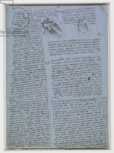 Studies of the heart, and notes on the vices of men, c.1511-13 (pen & ink on paper)