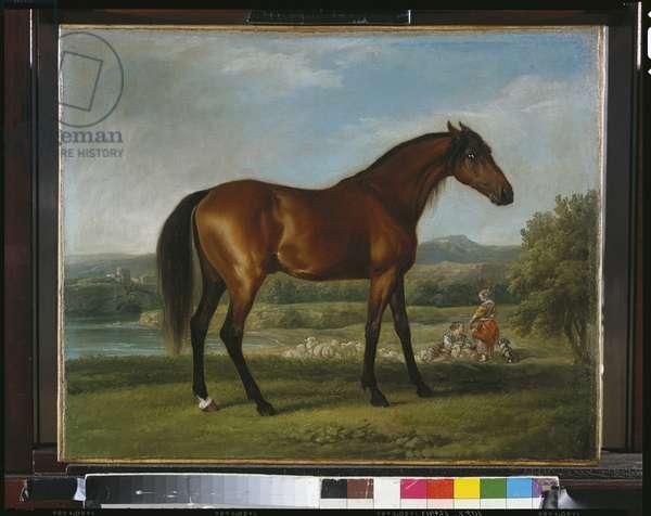 Hollyhock, c.1767-70 (oil on canvas)