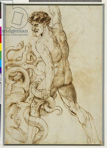 Hercules and the Hydra, c.1508 (pen & ink on paper) (recto of 3552306)