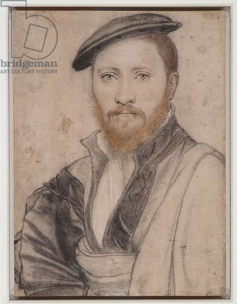 Portrait of a man, 1535 (pen & ink, chalk and metalpoint on paper)