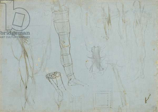 The anatomy of the leg, and other studies, c.1485-88 (pen & ink over metalpoint on pale blue prepared paper)
