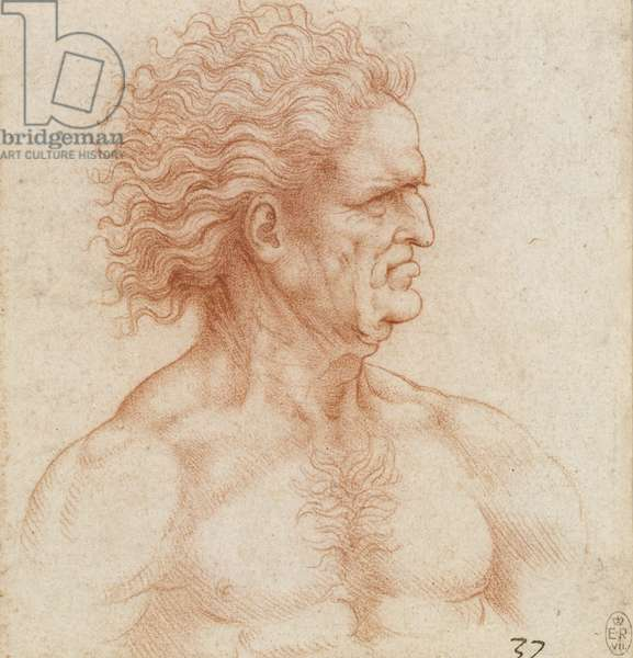 Bust of a man with flowing hair in profile, c.1510-20 (red chalk on paper)