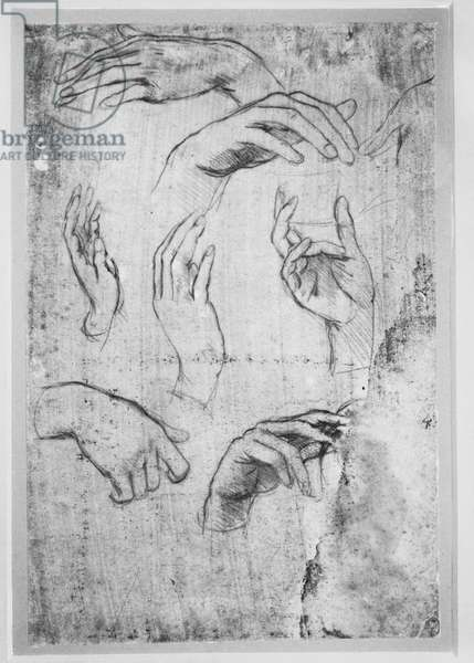UV image of studies of hands, c.1480 (metalpoint, much faded, on pink prepared paper) (see also 3740756)