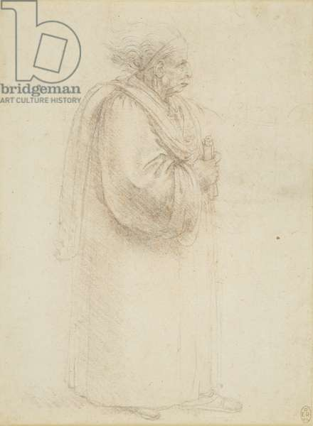 A caricature of a lawyer or an academic, c.1495 (chalk on paper)