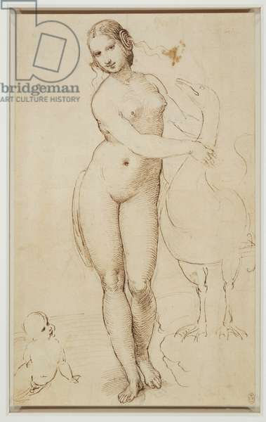 Leda and the swan, c.1507 (pen & ink over black chalk on paper)