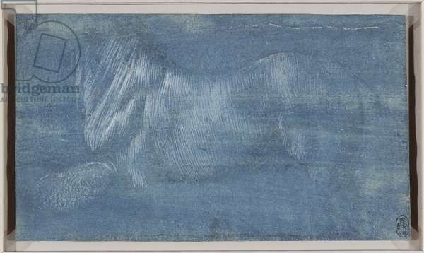 The body of a horse in profile, c.1490 (metalpoint, with white heightening, on blue prepared paper)