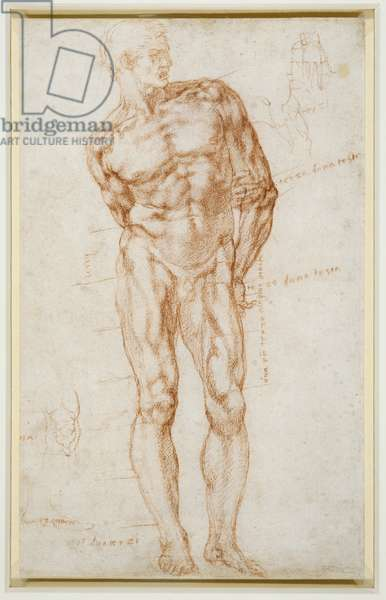 Male nude with proportions indicated, c.1515-20 (chalk on paper)