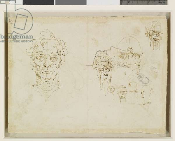 Studies of the head (Verso), c.1490-92 (Pen and ink)