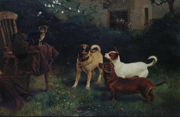 Cat and Dogs belonging to Queen Victoria, 1885 (oil on canvas)