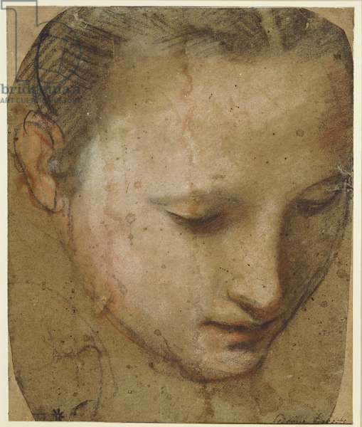 The Head of the Virgin, c.1575 (black, red, pink & white chalk on paper)