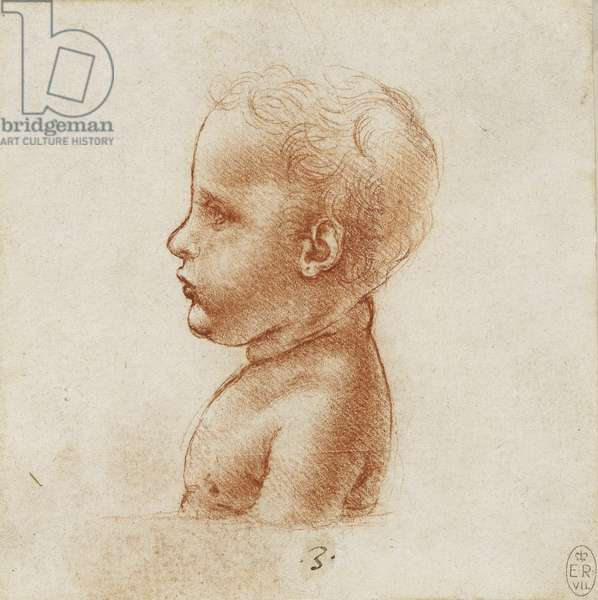 A bust of a child in profile, c.1495-1500 (red chalk on paper)