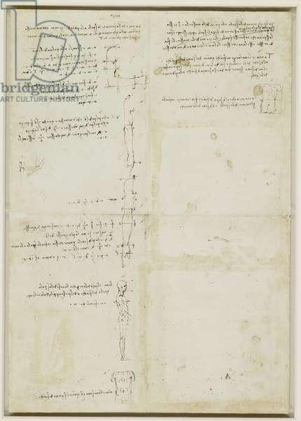Recto: Studies of human proportion, c.1490 (pen & ink on paper) (recto of 3823039)