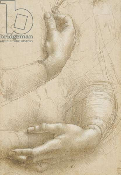 A study of a woman's hands, c.1490 (metalpoint, heightening and charcoal on paper)