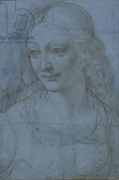 A young woman with long wavy hair, c.1490 (metalpoint on blue prepared paper)