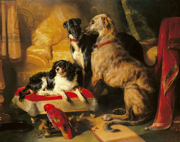 Hector, Nero and Dash with the parrot, Lory, 1838 (oil on canvas)