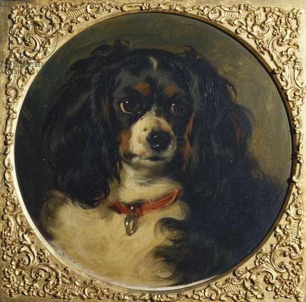 Dash, 1836 (oil on panel)