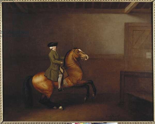 Portrait of a Gentleman, 1791 (oil on canvas)