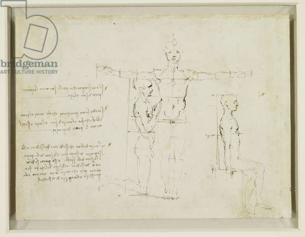 Recto: The proportions of a standing, kneeling and sitting man, c.1490 (pen & ink on paper)