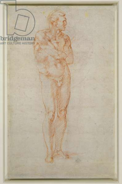 Standing male nude, c.1515-20 (chalk on paper) (verso of 3715476)