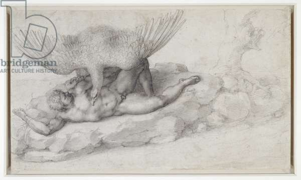 Tityus, 1532 (pencil on paper)