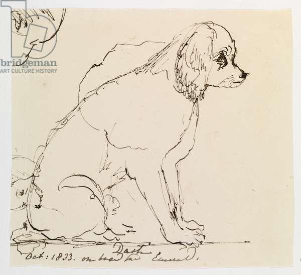 Dash, October 1833 (pen & ink on paper)