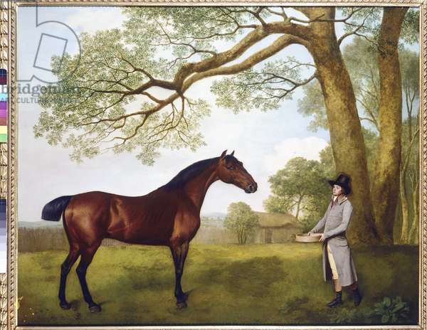 John Gascoigne with a Bay Horse, 1791 (oil on canvas)