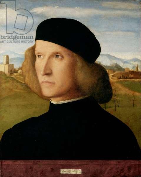 Portrait of a Man, c.1505 (oil on panel)