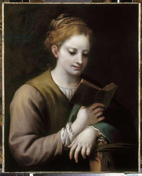 Saint Catherine Reading, c.1530-32 (oil on canvas)