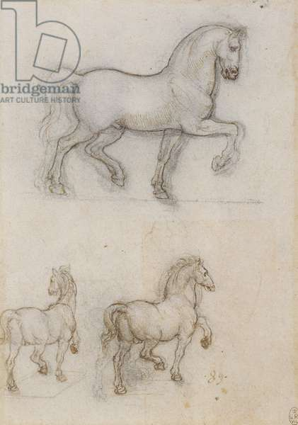 Studies for an equestrian monument, c.1517 (pen & ink over chalk on paper)