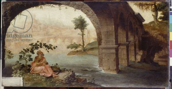 Jonah Under His Gourd, 1561 (oil on panel)