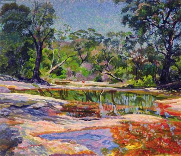 Wirreanda Creek, New South Wales, Australia (oil on canvas)