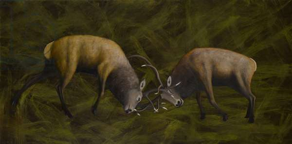 Fighting Stags, 2006 (oil on canvas)