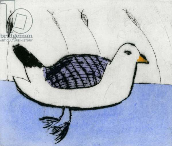 Sea Bird, 2011 (etching and watercolour)
