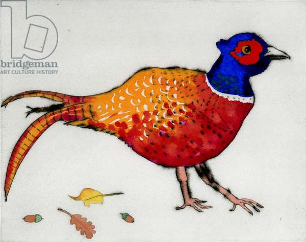 Strolling Pheasant, 2013 (drypoint and watercolour)