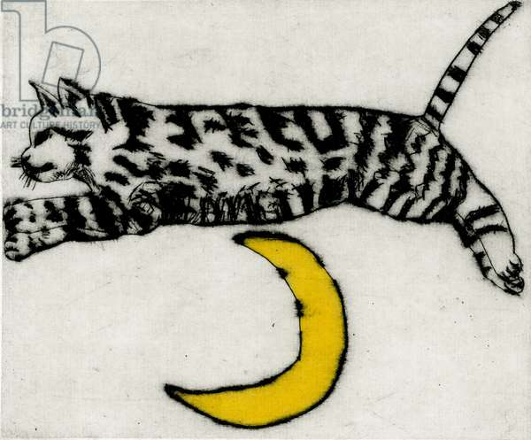 Leaping the moon, 2011 (drypoint and watercolour)