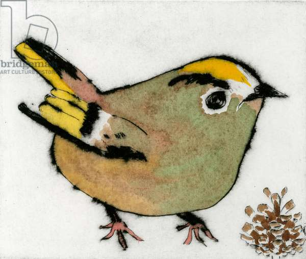 Goldcrest, 2012 (drypoint and watercolour)