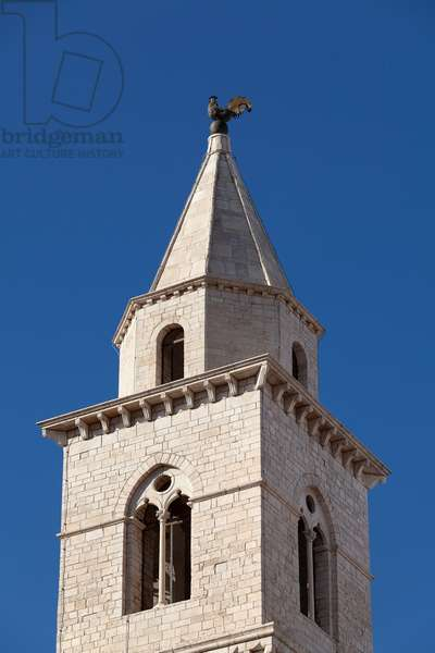 andria, puglia, italy, church of Sant'agostino, bell tower